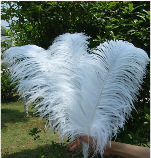 High quality Used to decorate white natural ostrich feathers 35-40cm PM-1210 ostrich Feathers
