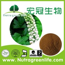 anti-depression factory outlet herb extract powder Black Cohosh Polyphenol 4% Chicoric Acid 2% HPLC