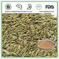 Best Price and Pure Fennel Seed Extract