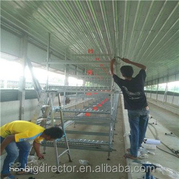 Import From China Metal Steel Structure Space Frame Poultry Farm