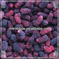 IQF fresh mulberry