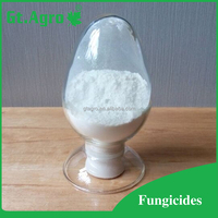 High activity fungicide Carbendazim 50%WP 80%WP CAS NO.10605-21-7