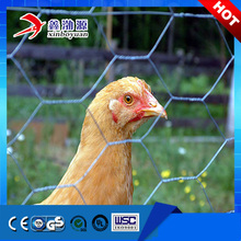 Factory cheap price agricultural wire netting galvanized hexagonal chicken wire mesh