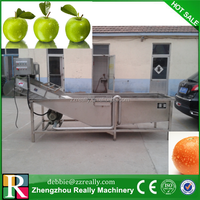 Factory price ss304 bubble vegetable cleaning machine/wash tank fruits/fruit wash