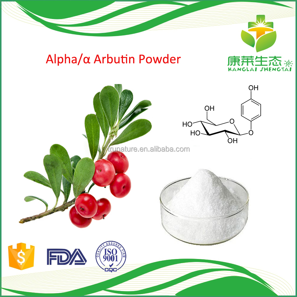 PROMOTION PRICE Bearberry Leaf Extract Active Ingredient Arbutin Beta
