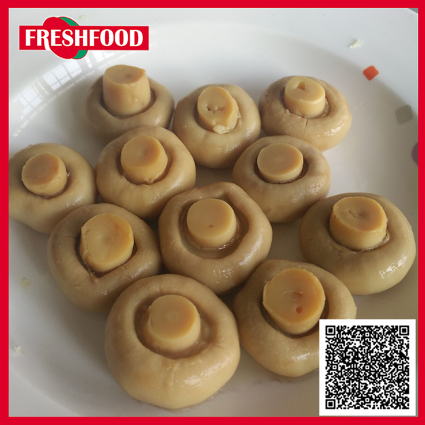 oem manufacturer,asian food export,oyster mushroom price
