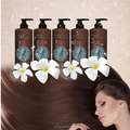 Excellent Quality Oxygen pure plant hair shampoo brands