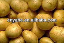 Special Potato powder flavour for seasonings