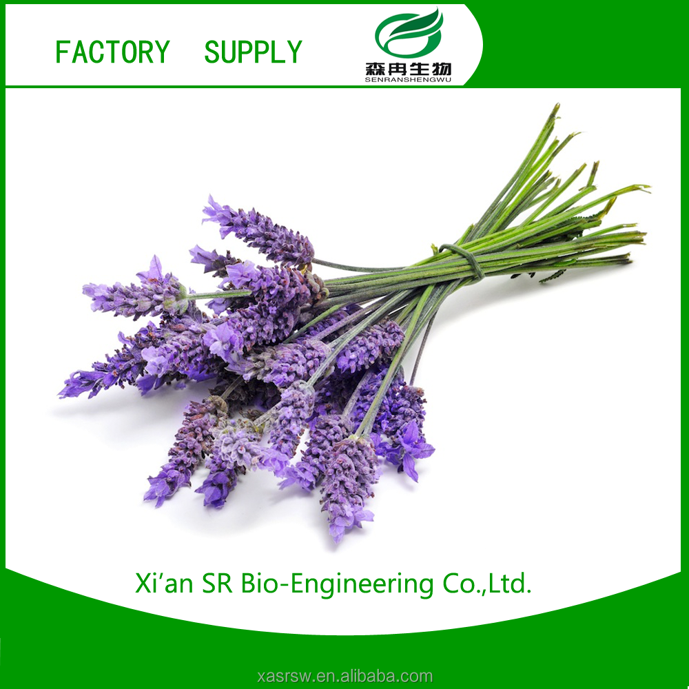 SR Lavender Extract,Hot Selling 100% Natural Organic Lavender Extract,Pure Lavender Extract Powder