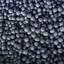 Supply New Crop Hign Quality Bulk Frozen IQF Blueberry with Factory Prices