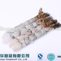 Scientific Name of Frozen Shrimp Hot Selling