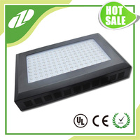 Best Led Grow Lights For Indoor Plants 300w Grow Light Led Cob For Orchid