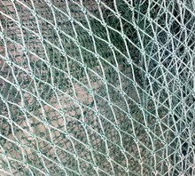 High strength square hole anti-bird net trap to protect plants , plastic garden netting, anti-bird net