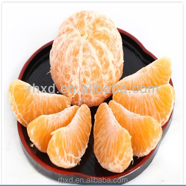 China Mandarin orange for Russian/oranges brands fruit