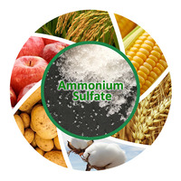 Agriculture Used Ammonium Sulphate Fertilizer NH4