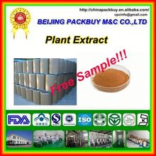 Top Quality From 10 Years experience manufacture red clover extract