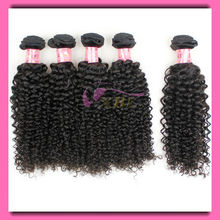 XBL Facotry Supply Tight Curly Indian Hair Kinky Curl