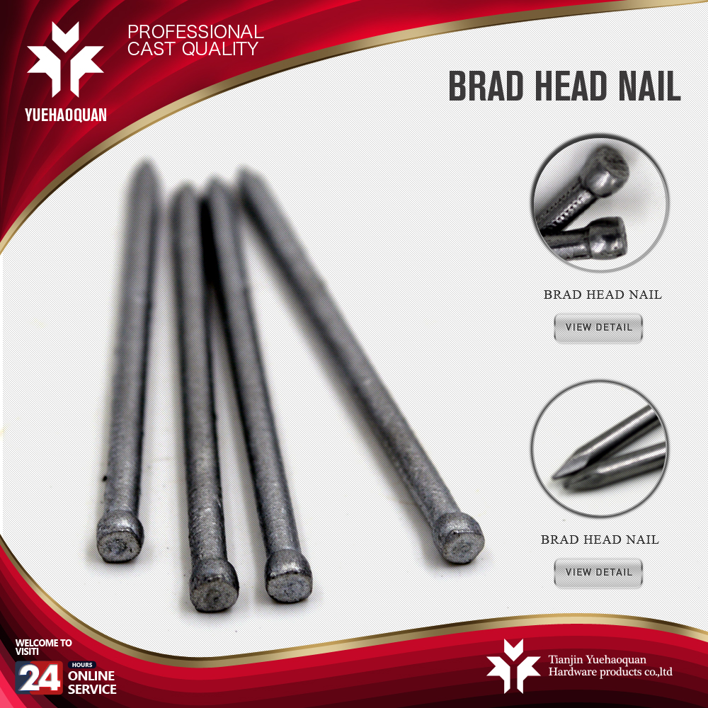 alibaba express china brad nails headless concrete nails factory round head brass nails
