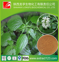 8 Years Production Experience Supply Nettle powder, Stinging nettle root extract, Nettle extract silica