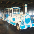 Popular Fun Park Resort Places Tourist Train 42 Seats Adult Rides Train Set