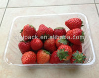 fresh strawberry storge container