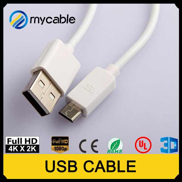 Special Price 2M USB RJ Port Notebook Security Dispaly Cable