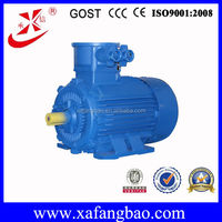 Reliable Quality 200kW 740r/min AC Flame Proof Three Phase Electric Motor