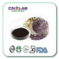 high quality black rice seeds extract in bulk