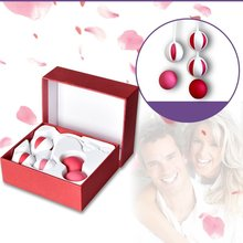 5 Different Weighted Kegel Balls Exercise Ben Wa Balls Vagina Weight Kit Double Hip Exercise