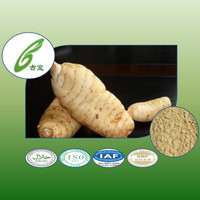 100% natural herb rhizoma gastrodiae extract to provide external treatment of plant extracts
