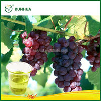High quality Pure Natural cold pressed grapeseed oil products for health care