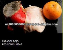 RED CONCH MEAT