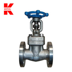 Forging gate valve 2 inch extension spindle