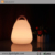 Battery Powered Cordless RGB 16 Colors LED Decor Table Lamp for Decor Home