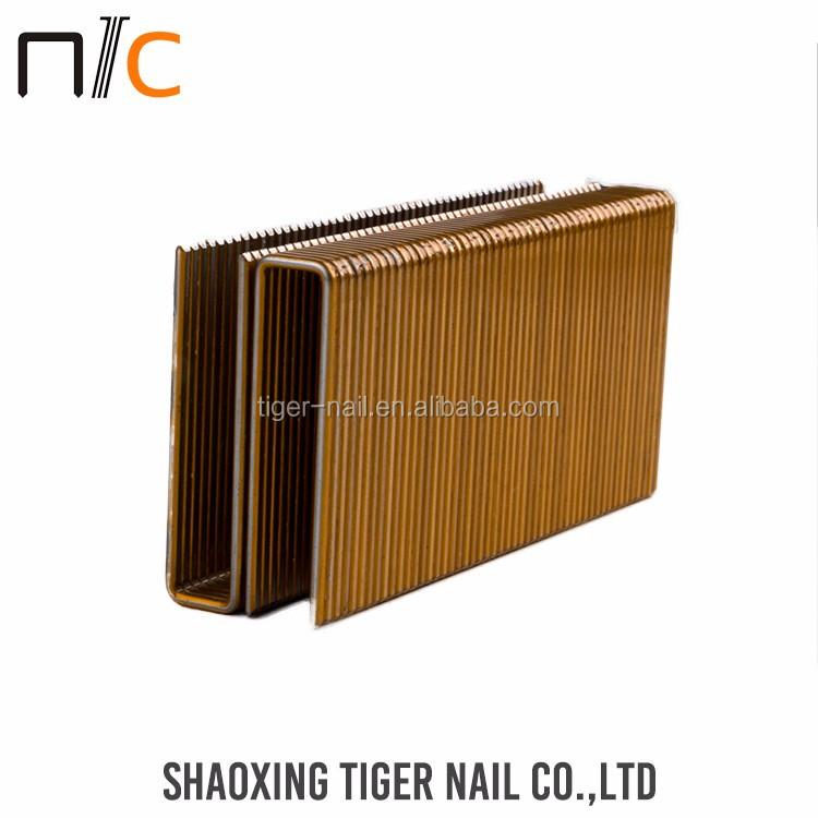Hot Selling Exporting standard double point nail