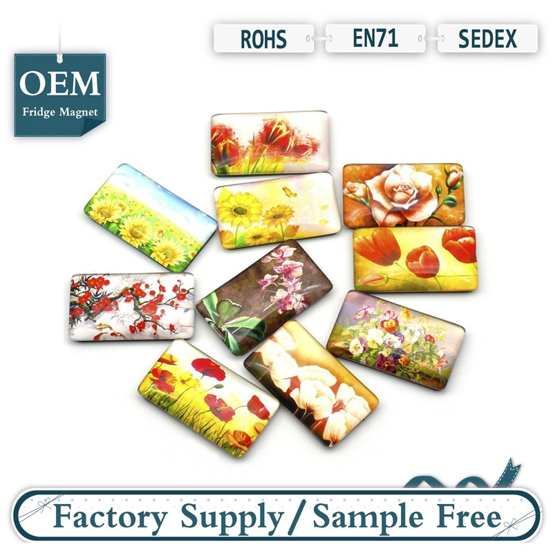 10 Pack Rectangle Fridge Magnets Colorful Kitchen Magnets - Flower Glass Refrigerator Mangets for Whiteboard