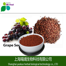 Natural antioxidants Grape Seed P.E. 95% Proanthocyanidins; grape seed extract