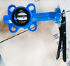 Butterfly valve with hand lever CI butterfly valve