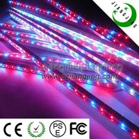 60w high quality shenzhen new style waterproof blue/red led plant grow light for orchids