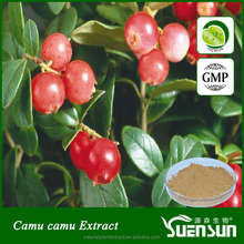 Factory bottom price Camu Camu fruit extract powder 8% - 20% Vitamin C