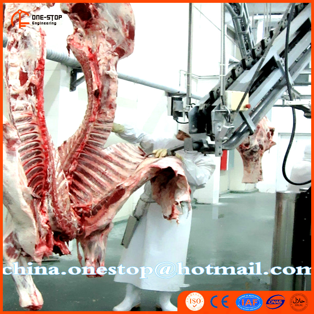 European Standard Hog Slaughter Equipment for Meatpacking Machine Line