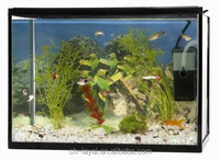 6Gallon Glass Fish Tank Kit