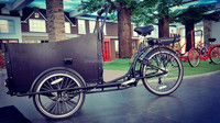 Classic 36V Voltage and Open Body Type electric cargo bike for sale