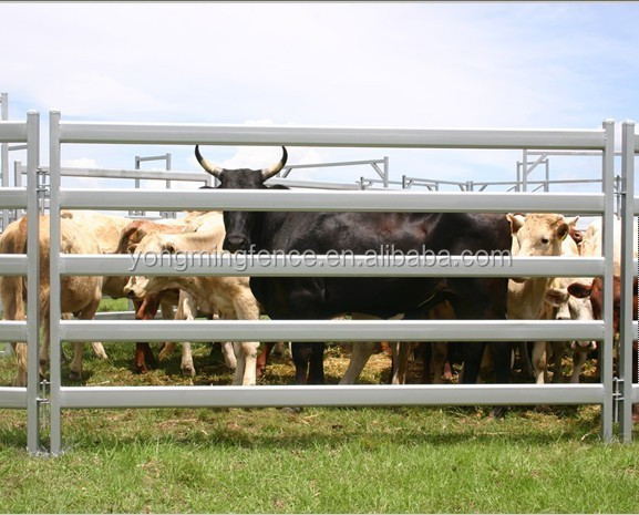 Heavy duty quality sheep yard panels for Australia