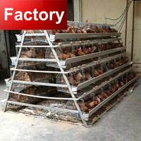 Design farm house used chicken cages 4 tier