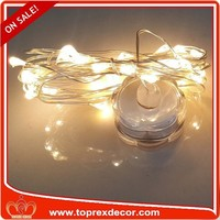 China Custom Cheap Battery Operated Wire Copper Led String Light