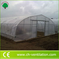 Strong structure Galvanized Wholesale plastic tunnel greenhouse