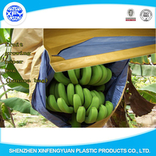 High Quality Banana Growing Plastic Bag