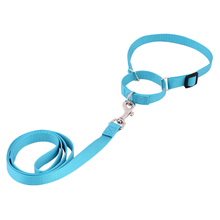 Personalized Pet Accessories Adjustable Nylon Dog Collar and Leash