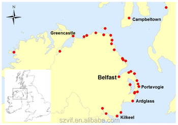 Shenzhen container shipping service to Belfast
